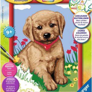 creatief schilderen op nummer hond