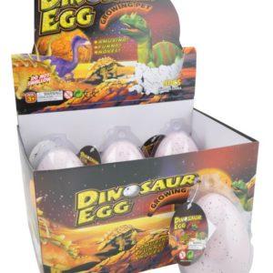 boys dino egg GM/display